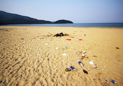 Đà Nẵng xử phạt người xả rác ra bãi biển 1