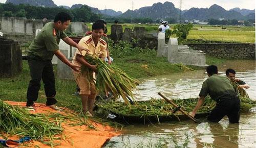 Công an giúp dân gặt lúa chạy lũ 1