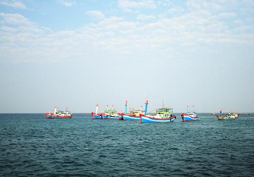 Đà Nẵng có trường mang tên quần đảo Hoàng Sa 1