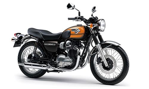 Kawasaki W800 Final Edition 2016 - phiên bản cuối cùng ở châu Âu 1