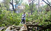 Thái Bình ngổn ngang sau bão Mirinea