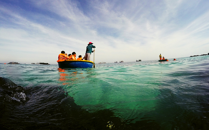 ngắm san hô đảo Lý Sơn