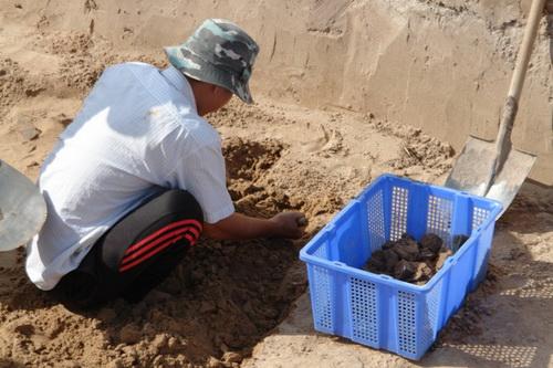 Qúa trình khai quật, các nhà khảo cổ đã phát hiện 23 mộ cổ.