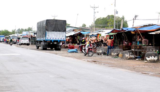 Thanh Hoa – the largest bird market in Vietnam