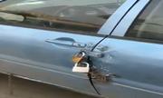 Tài xế khóa ôtô cẩn thận nhất thế giới