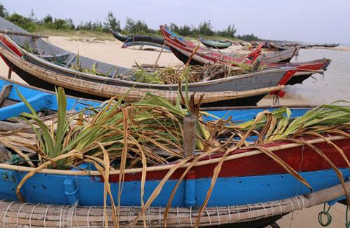 àng trăm tàu thuyền của ngư dân ở Hà Tĩnh, Quảng Trị nằm phơi mưa nắng từ khi Formosa xả thải đầu độc biển miền Trung
