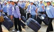 Vì sao nhiều người Việt trốn ở lại Hàn và Nhật khi đi du lịch?