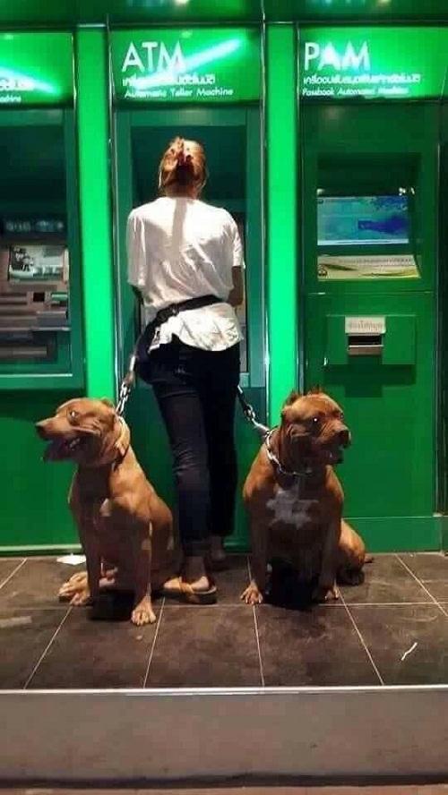 Cô chủ cứ yên tâm rút tiền, chuyện còn lại cứ để chúng em lo.