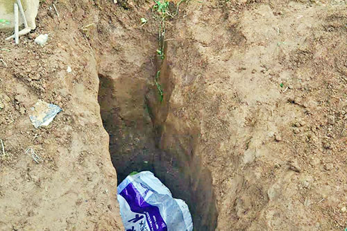 Vị trí thi thể chị Mai Thị Anh Đào bị chồng giết rồi chôn giấu phi tang. Ảnh: Khánh Hương