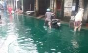 Con đường ngập nước màu xanh sau mưa to Hà Nội