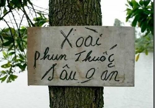 hieu-lam-tai-hai-do-ngat-cau-khong-dung-1