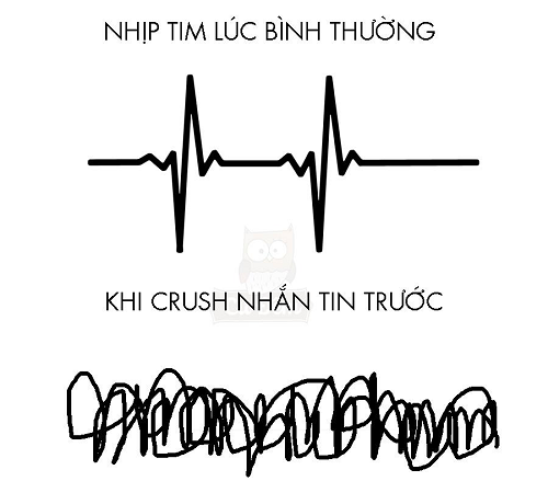 Logic của con tim.