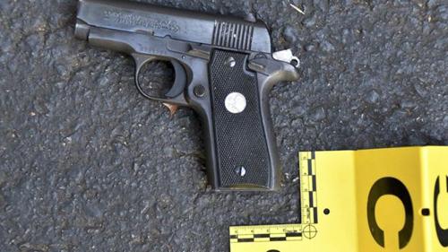 [Caption]khẩu súng ngắn và số cần sa mà họ cáo buộc thuộc sở hữu của Scott.