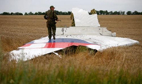 Một mảnh vỡ của phi cơ trong thảm họa MH17. Ảnh: Reuters.