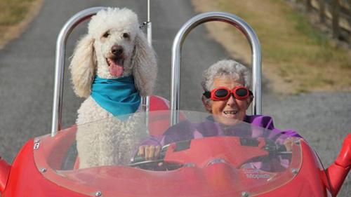 BàBauerschmidtđã đi gần 21.000 km và thăm 34 bang của nước Mỹ