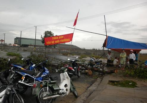 chuyen-gia-1-7-trieu-dan-bi-anh-huong-neu-quang-nam-doi-nha-may-thep-1
