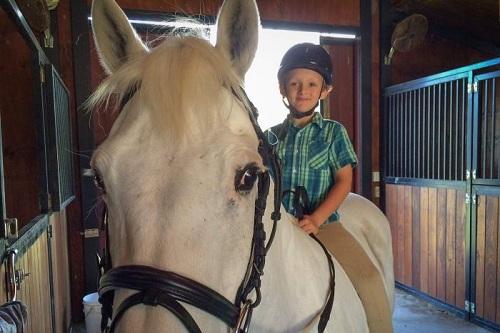 Cậu bé 7 tuổi mua ngựa từ tiền bán nước chanh