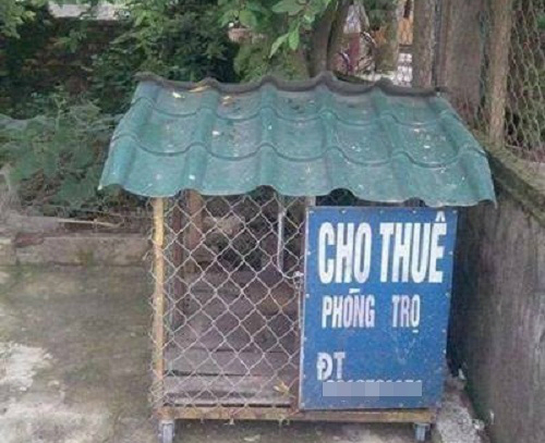 nhung-bien-bao-bang-hieu-kho-hieu-nhat-viet-nam-2