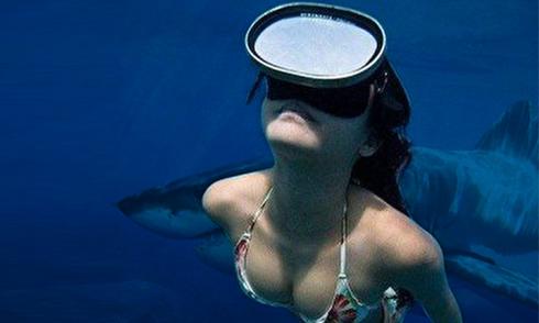 Tại sao người đẹp thất kinh và chẳng dám lặn biển sau khi xem ảnh này?
