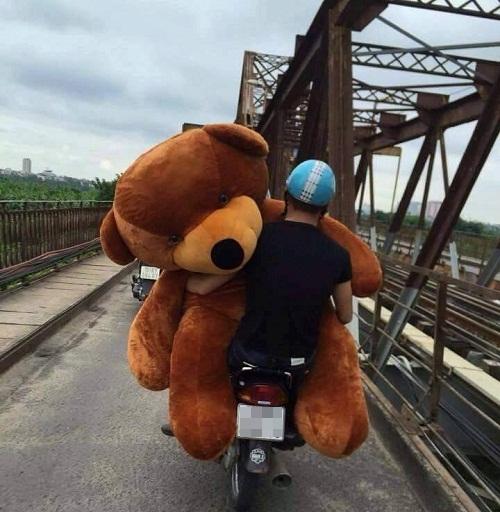 Người yêu không có nhưng gấu phải có một con.