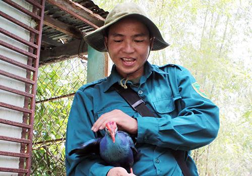 Kỹ sư trẻ bỏ Sài Gòn về quê làm bạn với chim, cá