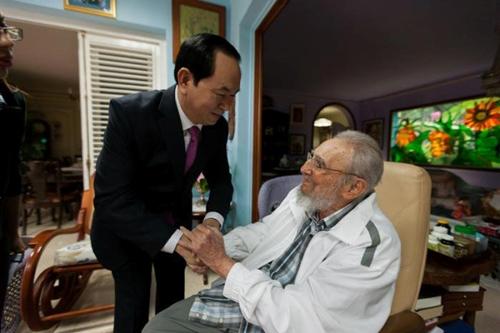 Chủ tịch nước Trần Đại Quang gặp cựu chủ tịch Cuba Fidel Castro ở thủ đô Havana ngày 15/11. Ảnh: Reuters.