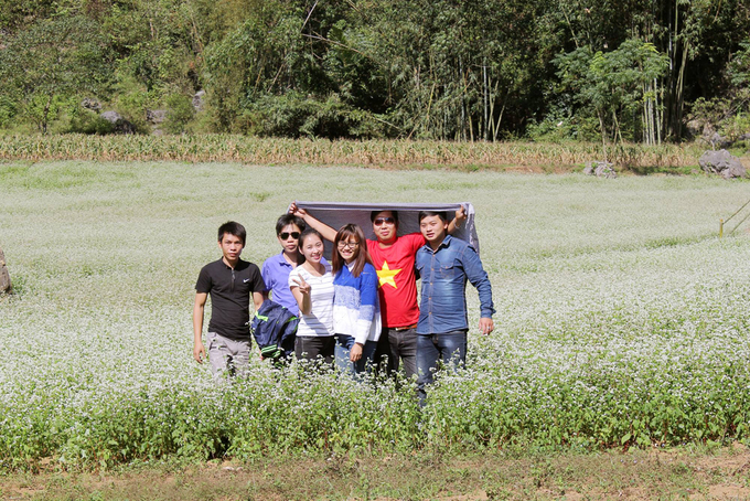 Những cánh đồng hoa tam giác mạch ở Lạng Sơn