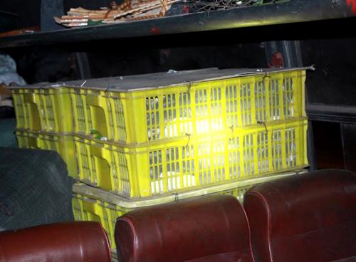 120 con rắn hổ mang trên xe khách. Ảnh: Kh. Uyên