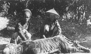 Hai nhà sư Sài Gòn xưa đánh chết cọp giữa ngày Tết hot trên mạng XH