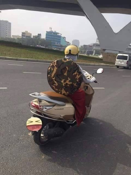 Ninja rùa xuất hiện trên phố Việt.