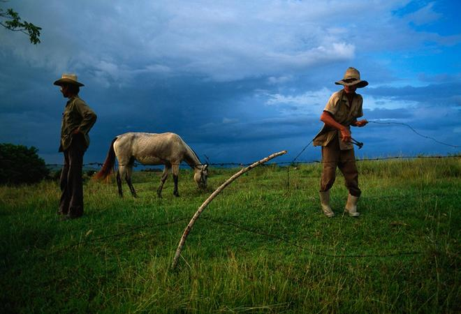 NationalGeographic-526139a-1480300239_66