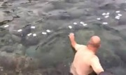 Người nước ngoài nhặt rác ở Ghềnh Đá Đĩa, du khách Việt đứng quay phim