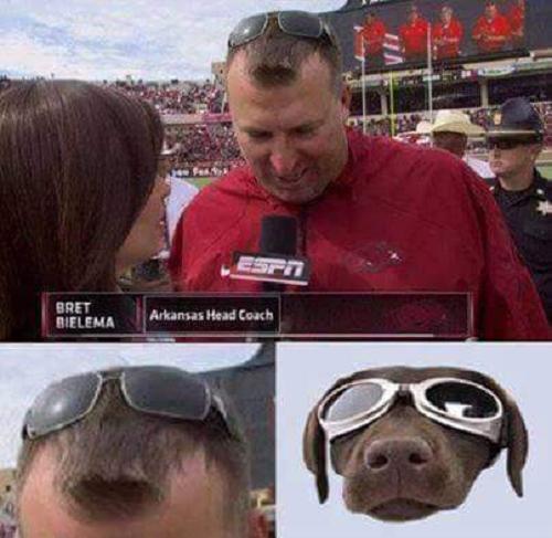 Mái tóc thời thượng cùng chiếc kính mát vô tình tạo thành gương mặt của một chú cún.