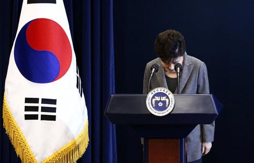 Bà Park cúi đầu trước khi phát biểu hôm nay. Ảnh: Reuters