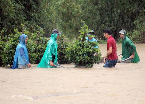 Hàng nghìn nhà dân Bình Định, Quảng Ngãi chìm trong lũ