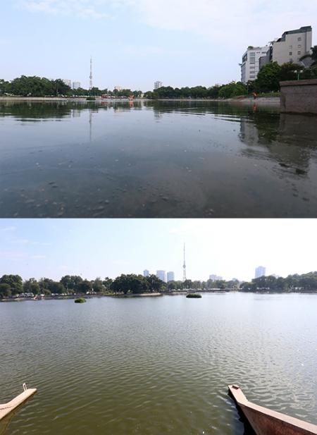 Chế phẩm độc quyền giúp làm sạch 80 hồ ô nhiễm - ảnh 1