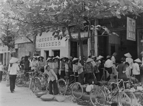 chuyen-xep-hang-nuoi-lon-thoi-bao-cap