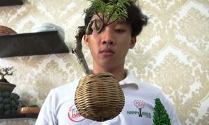 Bonsai bay lơ lửng giá tiền triệu ở Sài Gòn