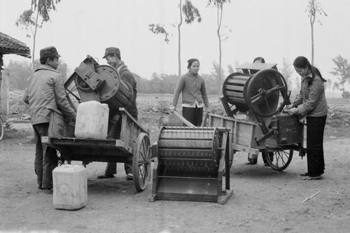 Máy tuốt lúa được phân phối cho xã viên hợp tác xã ở Hà Bắc (cũ). Ảnh: TTXVN.