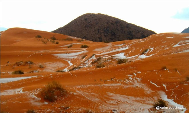 Tuyet roi lan dau tien sau 37 nam tren sa mac Sahara
