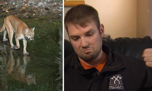 Will Gibb đấm vào đầu con báo sư tử để giải cứu chó cưng. Ảnh: CBC News