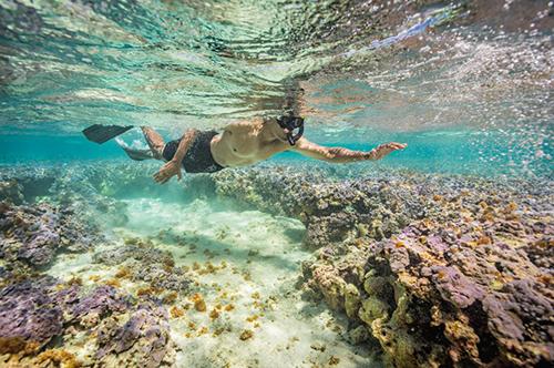 Tổng thống Obama lặn biển ở Thái Bình Dương năm ngoái. Ảnh: National Geographic