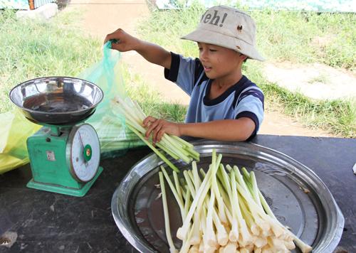 Cậu bé 9 tuổi học bài bên lề đường ở Sài Gòn - ảnh 2