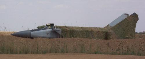 Giải mã cái chết của phi công tiêm kích Mỹ trên chiến trường Iraq - ảnh 2