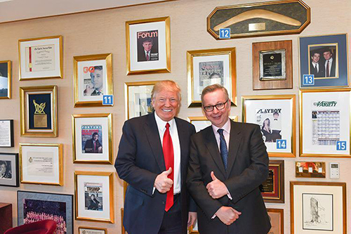 [Caption]Mr Trump pictured with ex-Cabinet Minister Michael Gove who interviewed the President-elect