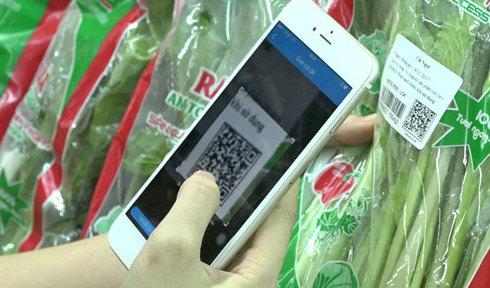 nguoi-sai-gon-dung-smartphone-soi-rau-sach