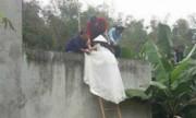 Cô dâu trèo tường vào nhà chú rể