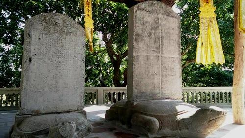 bao-vat-quoc-gia-700-nam-nam-giua-rung-phong-1
