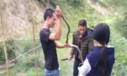 Tay không bắt rắn dài 2 mét vướng rào lưới