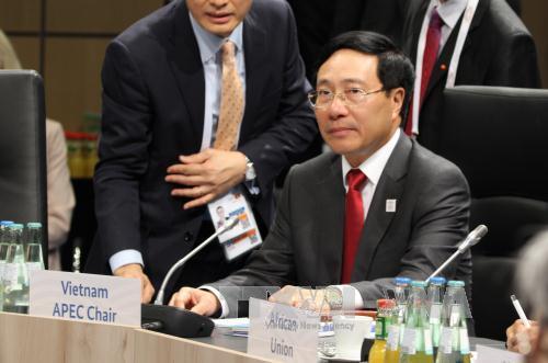 Phó thủ tướng Phạm Bình Minh phát biểu tại Hội nghị Ngoại trưởng G20 - ảnh 1